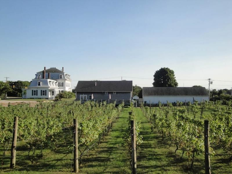 Langworthy Farm Winery And Bed Breakfast For Sale Rhode Island Rhode Island Beaches Winery Rhode Island