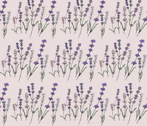 Botanical Sketchbook, Lavender fabric by meowandcraft on Spoonflower - custom fabric