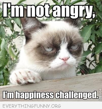 6e8e4c3e9162e002296cf8f42821e7ae grumpy cat meme picture i'm not angry i'm happiness challenged