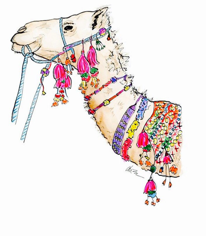 Pin By Aastha On Print Watercolor Illustration Camels Art