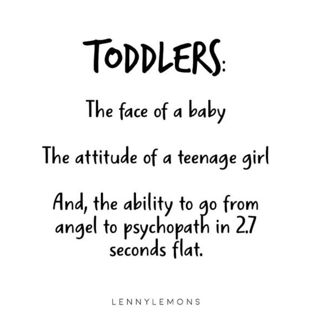 20 Hilarious Quotes About Motherhood Mom Life Quotes Motherhood Funny Quotes About Motherhood