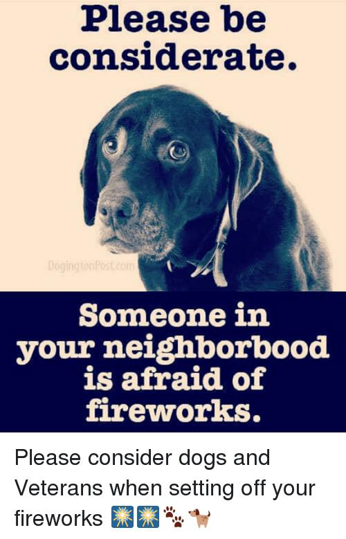 Download Meme Dog Fireworks Png Gif Base Dogs And Fireworks Fireworks Dog Puns