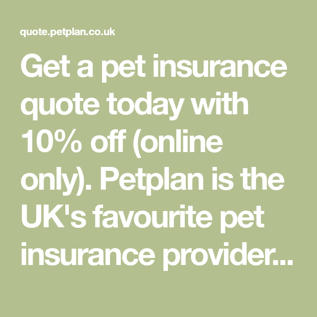 Get A Pet Insurance Quote Today With 10 Off Online Only Petplan Is The Uk S Favourite Pet Insurance Pro Pet Insurance Quotes Pet Insurance Insurance Quotes