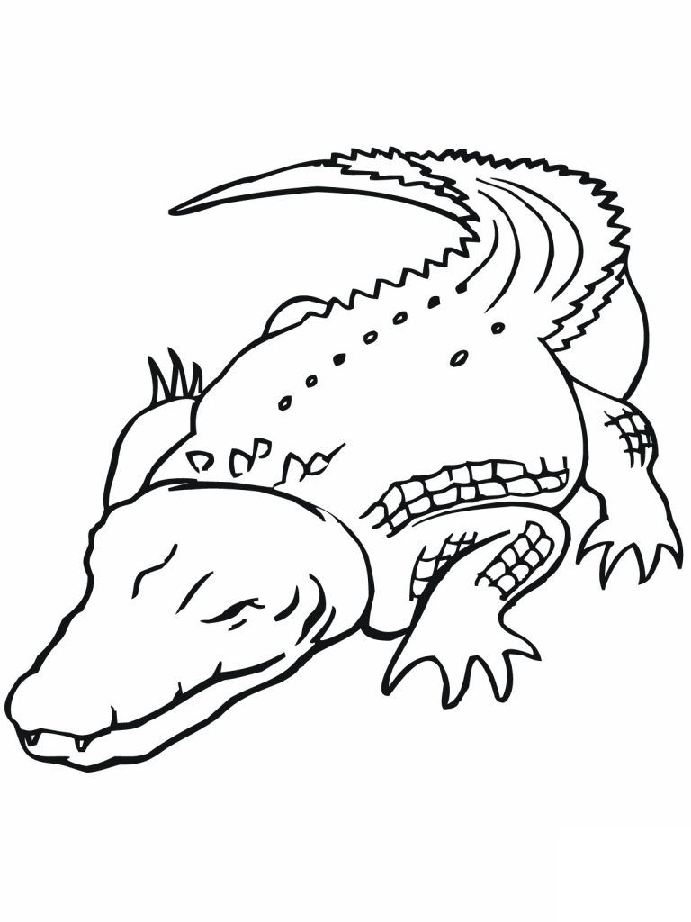 Free Printable Crocodile Coloring Pages For Kids Animal Coloring Pages Coloring Pages Australian Animals