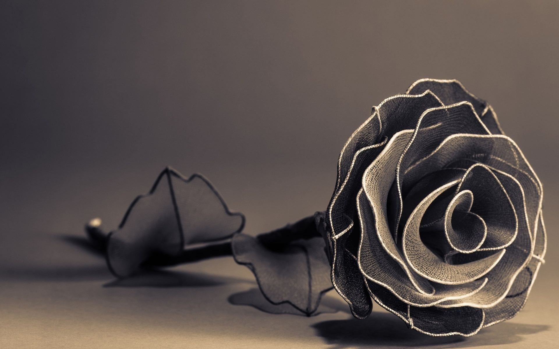 3d black rose hd wallpapers Rose wallpaper, Rose flower
