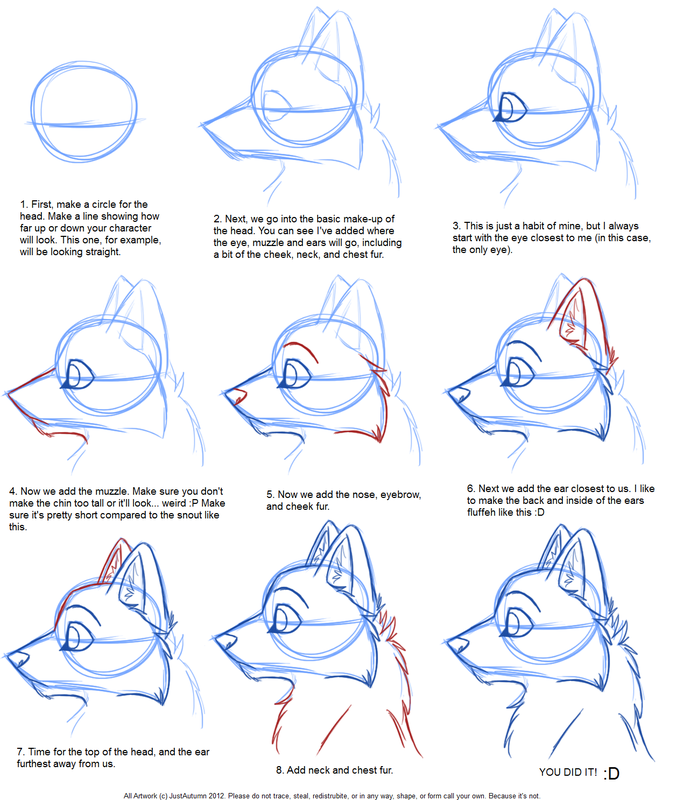 How To Draw A Wolf Google Zoeken A Very Easy Step By Step Tutorial Animal Drawings Drawings