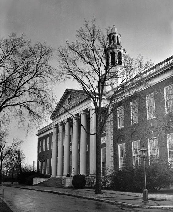 Northeastern university supplement essays