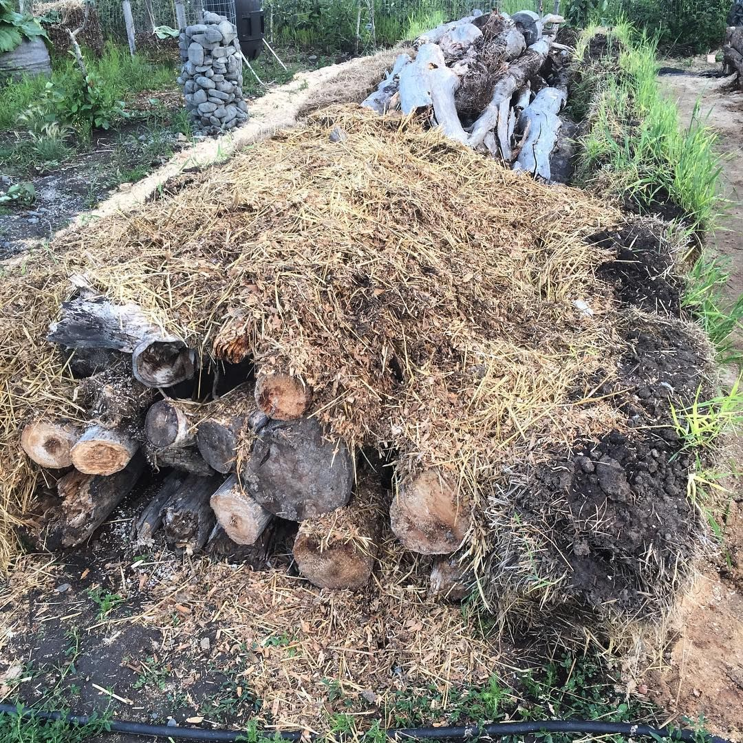 This German gardening technique starts with yard waste you'd otherwise throw away.
