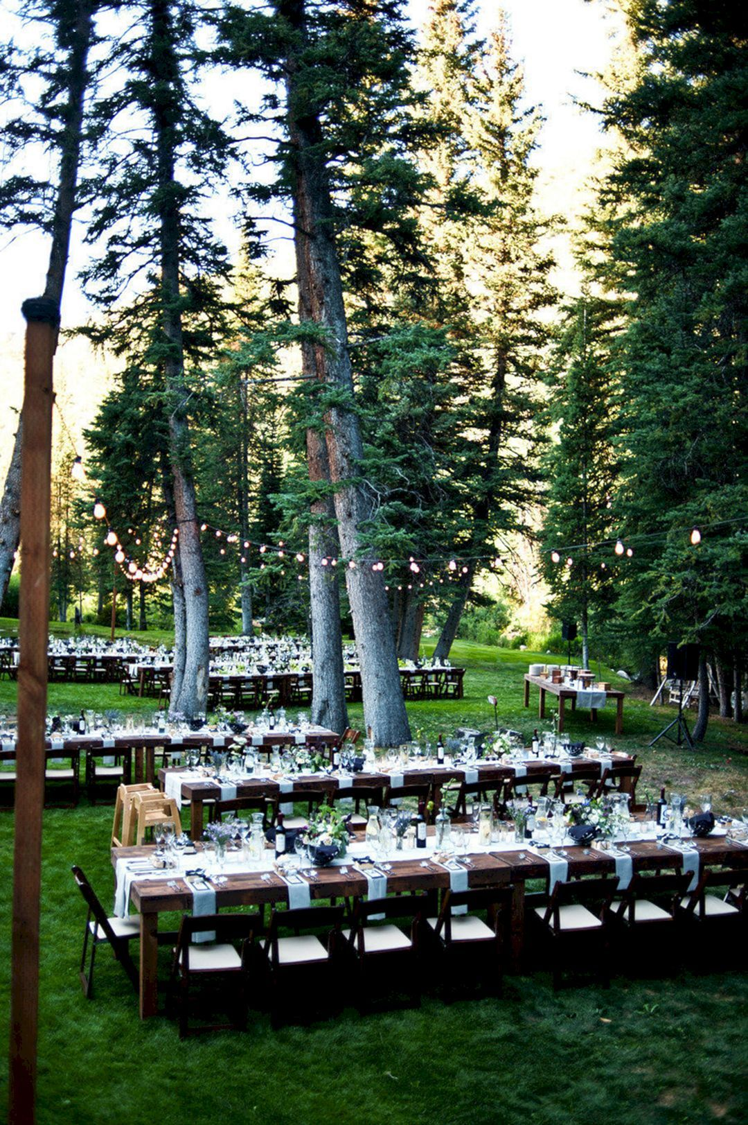 55+ Awesome Redwood Forest Wedding Venues For Perfect