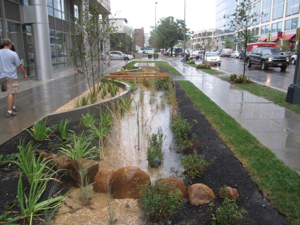 225 best Special swales images on Pinterest Rain garden