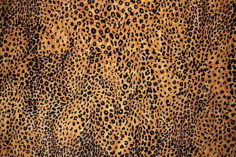 Leopard Animal Print Texture Animal Print Fur Texture Background Ad Print Texture Animal Print Texture Leopard Print Background Animal Print Background