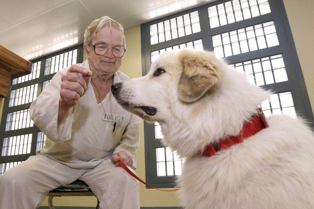 Paws In Prison Dog Training Program Gives Arkansas Prisoners And