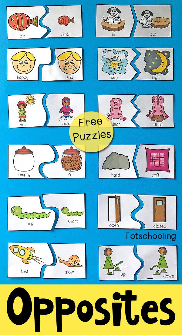 Science Fair Worksheet Excel Opposites Puzzles For Preschool  Free Printable Puzzles  Facial Proportion Worksheet Pdf with Homophones Worksheet 3rd Grade Explore These Ideas And More Worksheet Templates Free Pdf
