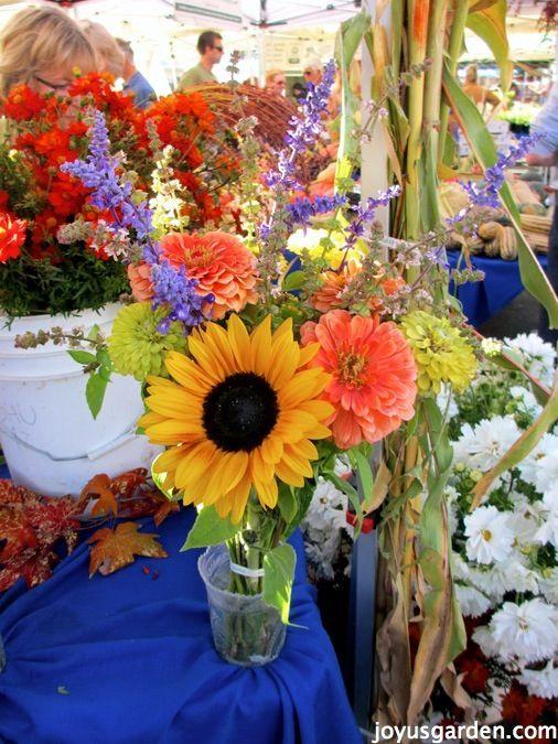 Fabulous Fresh Cut Flowers - how to keep flowers fresher longer ...