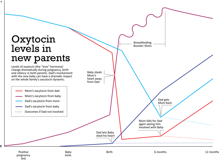 Oxytocin levels in new parents | Fascinating! | Diagram