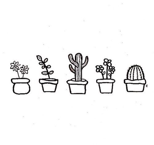 Cute Little Succulents B W Doodles Drawings Cute Little