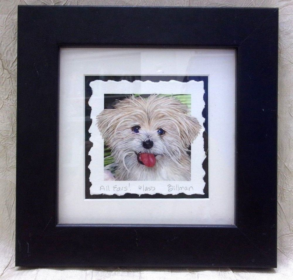Jane Gregg Billman Limited Edition Etching Maltese Dog All Ears