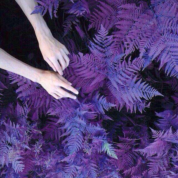 Black Purple Grey Aesthetic