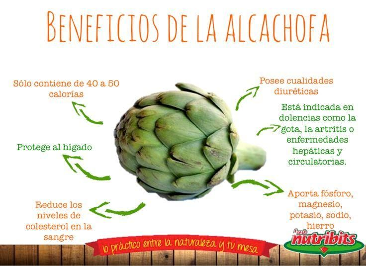 alcachofa para adelgazar tabletas de apple