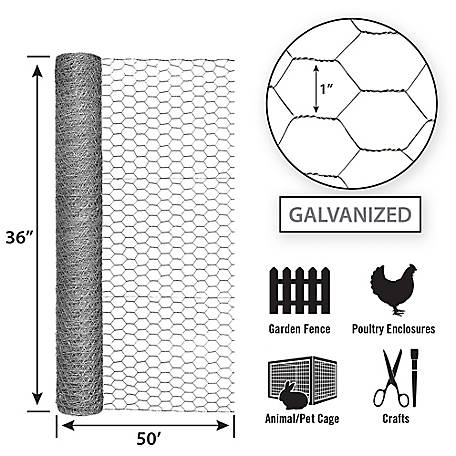 Search Results For Chicken Wire At Tractor Supply Co In 2020 Chicken Wire Poultry Galvanized