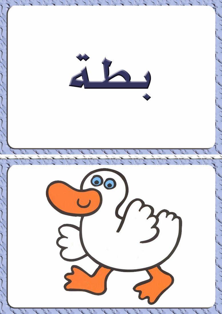 ألبومات صور منوعة صور مجموعة بطاقات لبعض كلمات اللغة العربية مع رسم تمثيل كل كلمة Drawings Photo Design Cards