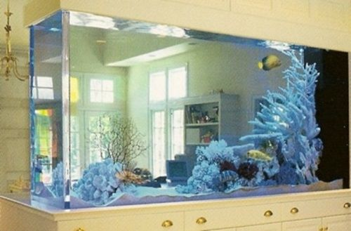 8 Dual Purpose Fish Tank Design Ideas   Interior Design   The Functional  And Decorative Dual Purpose Become Popular In Different Parts Of Our Homes.