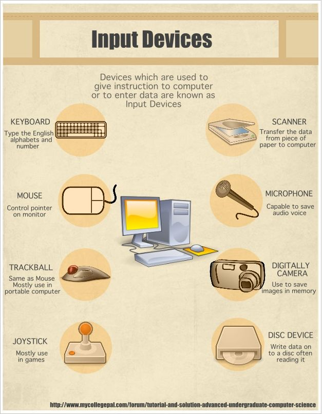 Input Devices Infographic Computer Basic Computer Lab Posters Computer Lessons