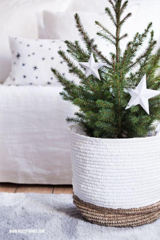 Pilzsuppe mit Tortellini  Weihnachtsdeko in Grün und Weiß Xmas