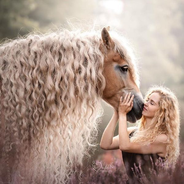 """Rapunzel Horse"" Has Captured Hearts of the Internet With Her Luscious Blonde Mane"
