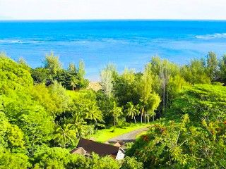Gorgeous 4 Bedroom Estate fronting Anini Beach! Sleeps 12!Vacation Rental in Anini Beach from @HomeAway! #vacation #rental #travel #homeaway