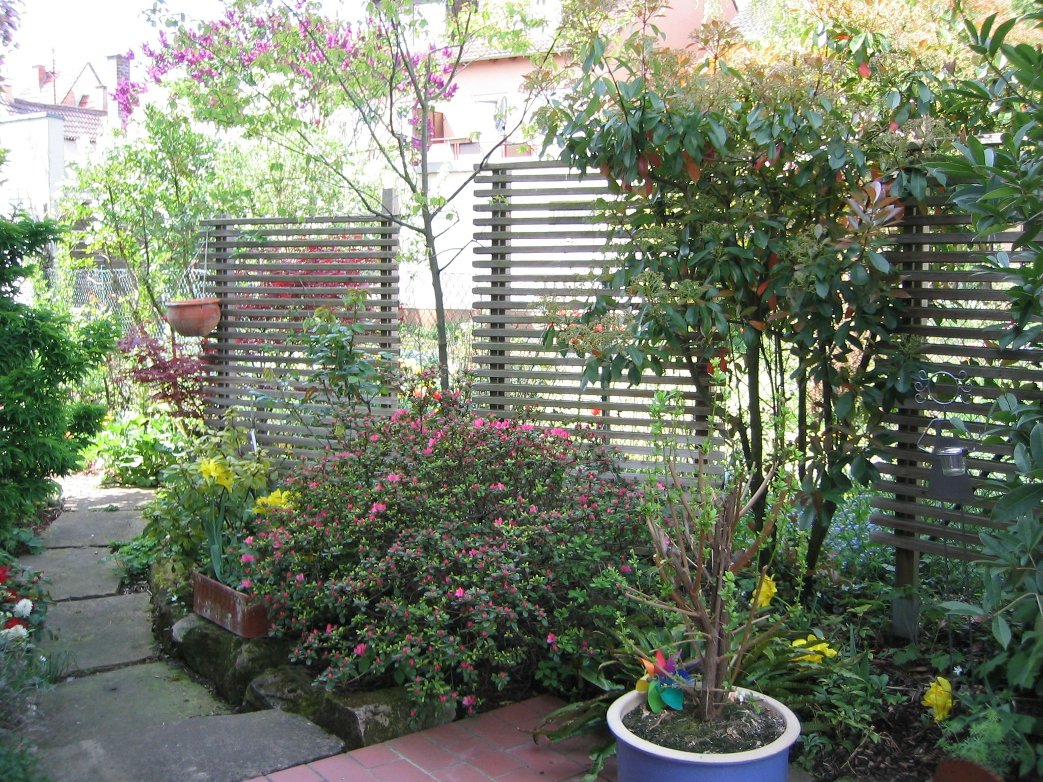 Sichtschutz stein gartengestaltung sichtschutz stein - Hangepflanzen garten ...