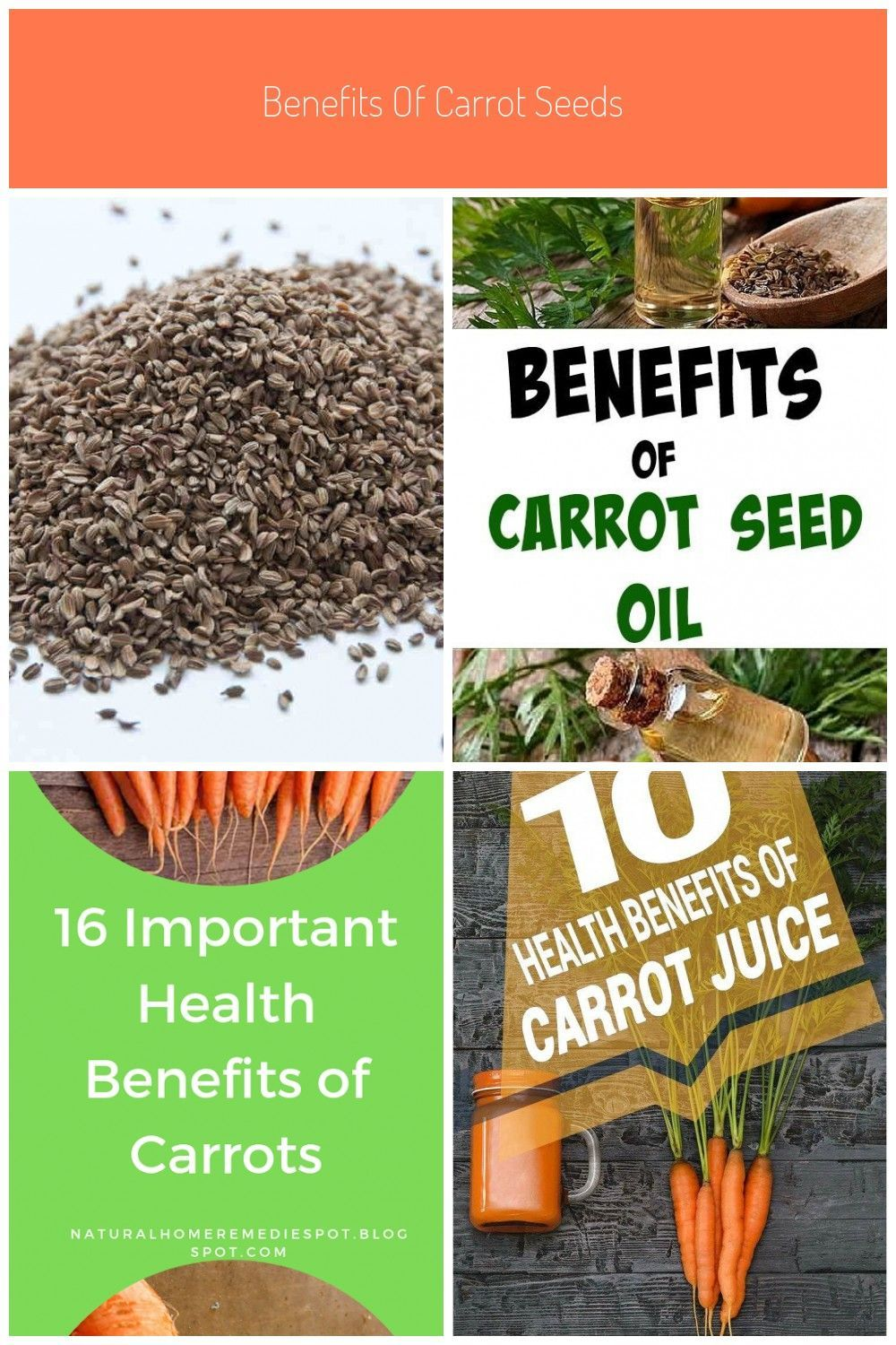 Benefits Of Carrot Seeds For Periods Carrot Benefits Seeds