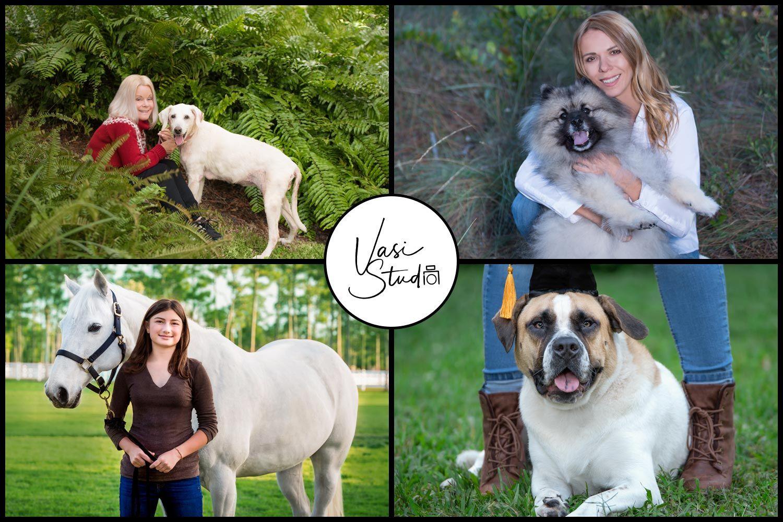 Pin by Vasi Studio on Fine Art Pet Photography by Vasi Studio, Palm ...
