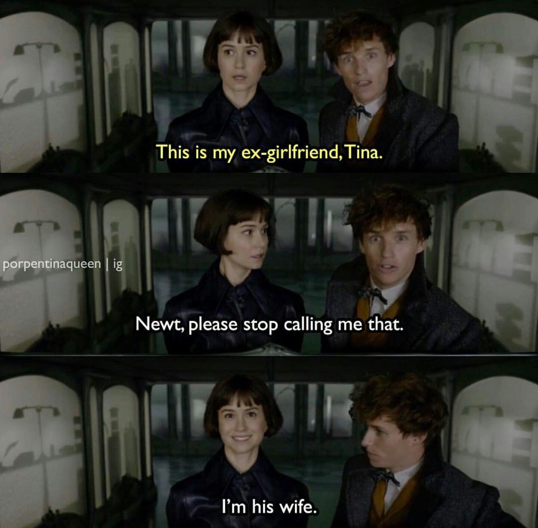 Newt Harry Potter Memes Hilarious Harry Potter Fantastic Beasts Harry Potter Funny