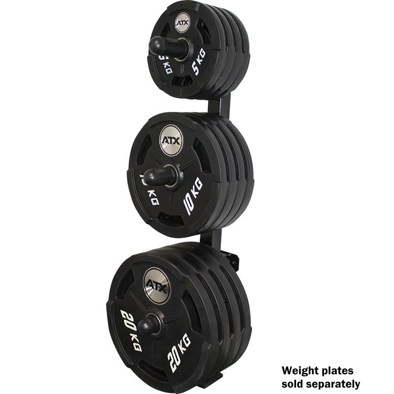 Wall Mounted Olympic Weight Rack | Weight rack, Wall mount and Gym