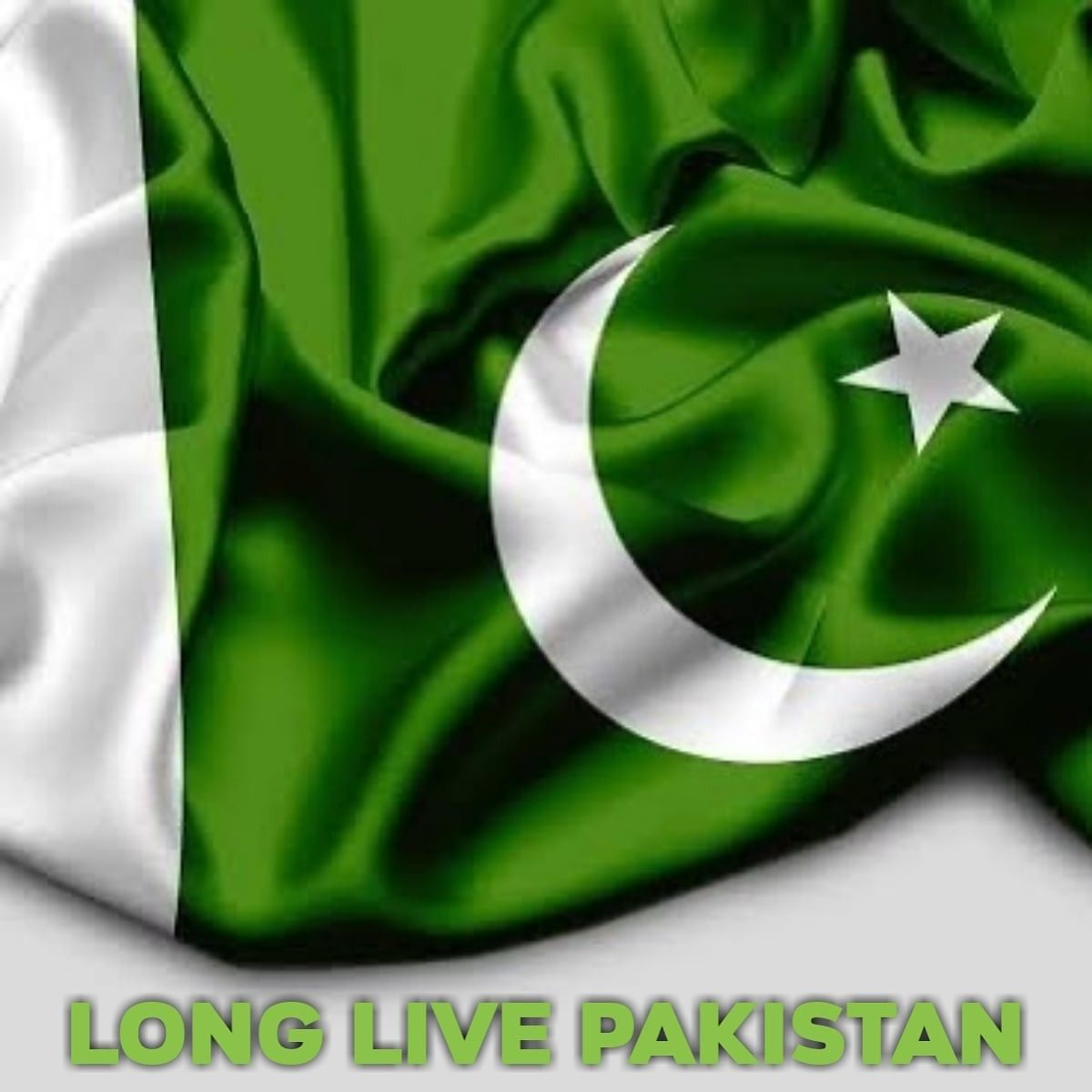 Hppy Independence Day In 2020 Independence Day Pakistan Day