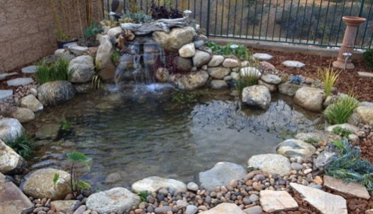 How to Build a Small Pond in Your Backyard (With images ...