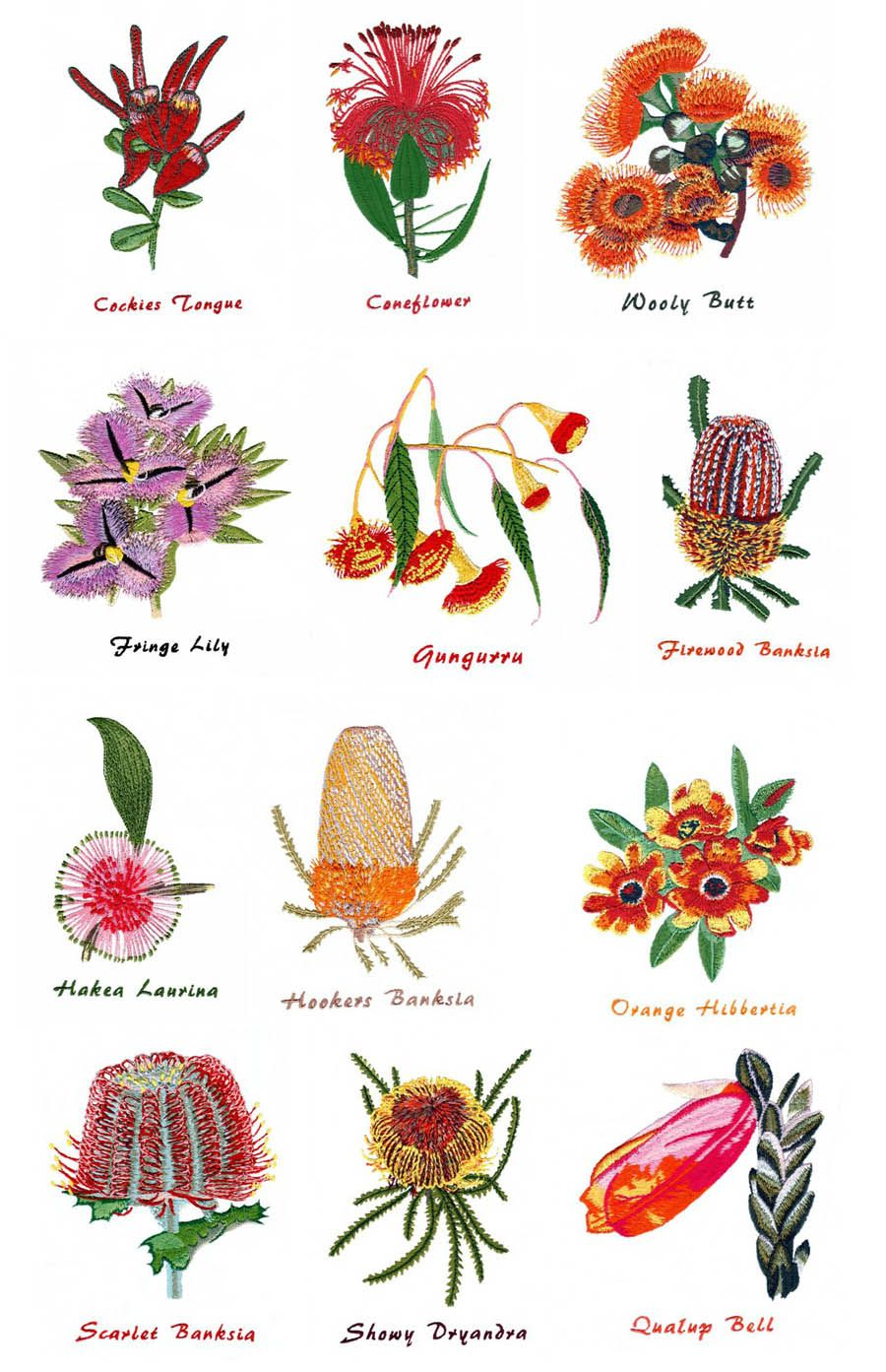 west australian wildflowers by outback embroidery out