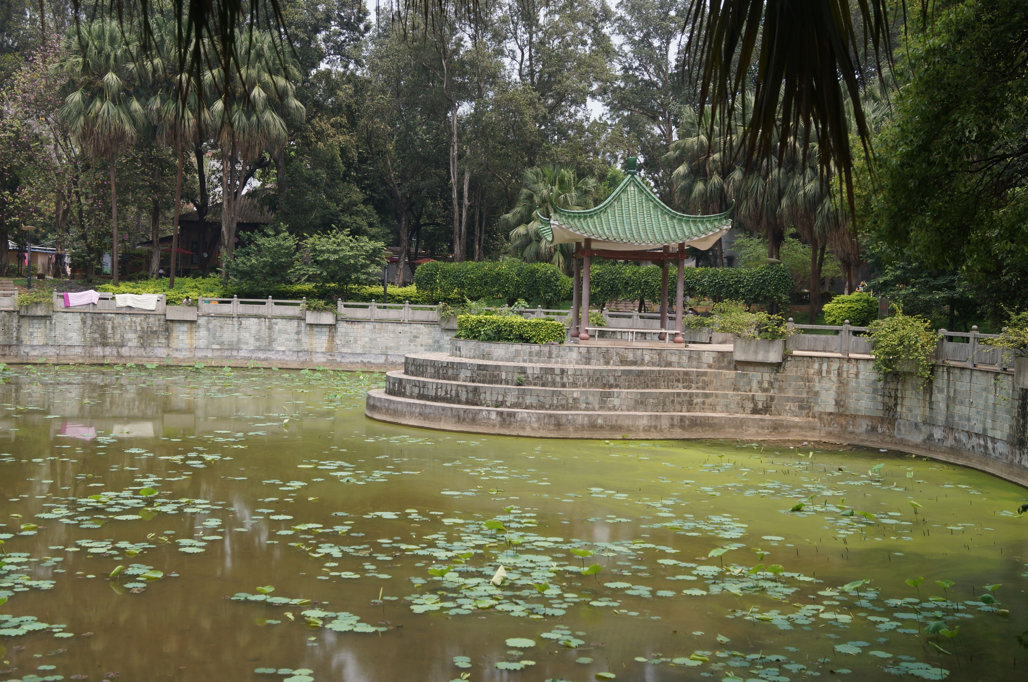 Sun Yat Sen University in GuangZhou (中山大学,广州)