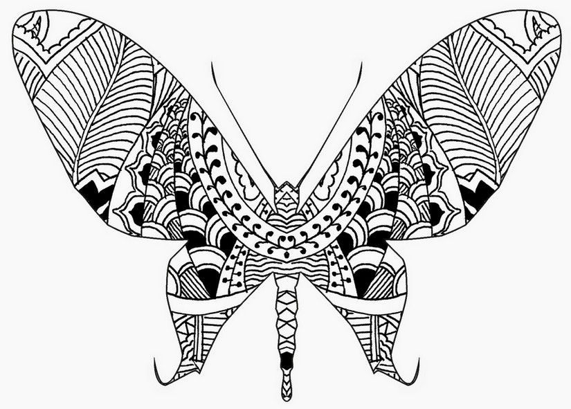 Adult Coloring Page Butterflies