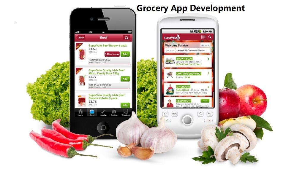 Grocery Delivery Mobile App Development services India