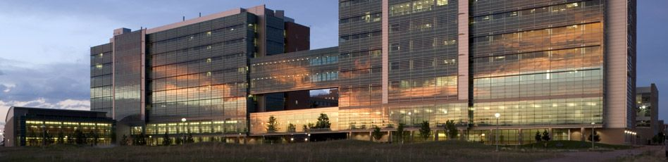 University of Colorado master of science in physician