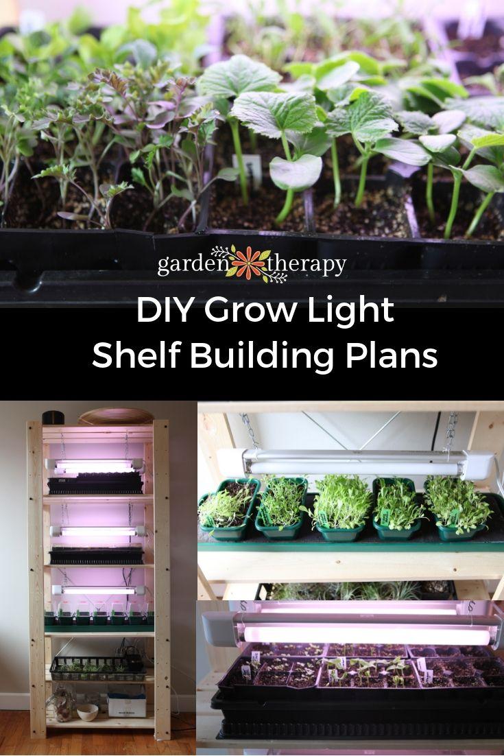 Grow Light Shelf Set Up for Seed Starting Indoors