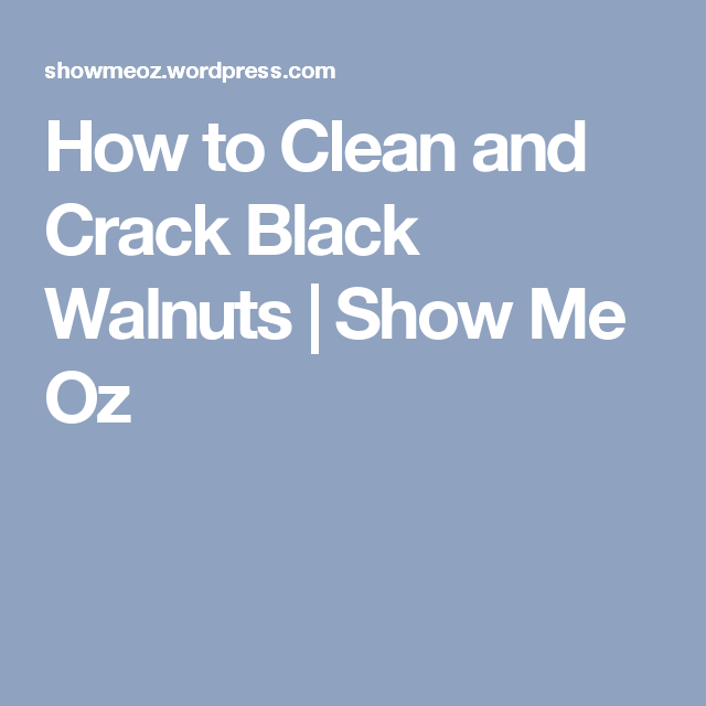 How to Clean and Crack Black Walnuts | Show Me Oz