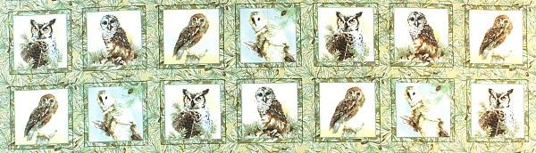 SPX Fabrics - Giordano Studios 'Owls Of Wonder'