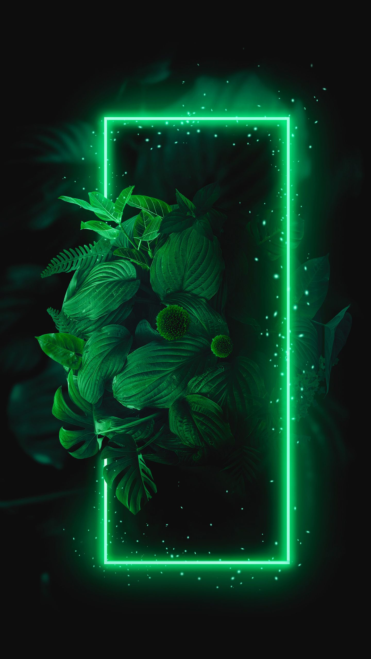 Green And Black Wallpapers