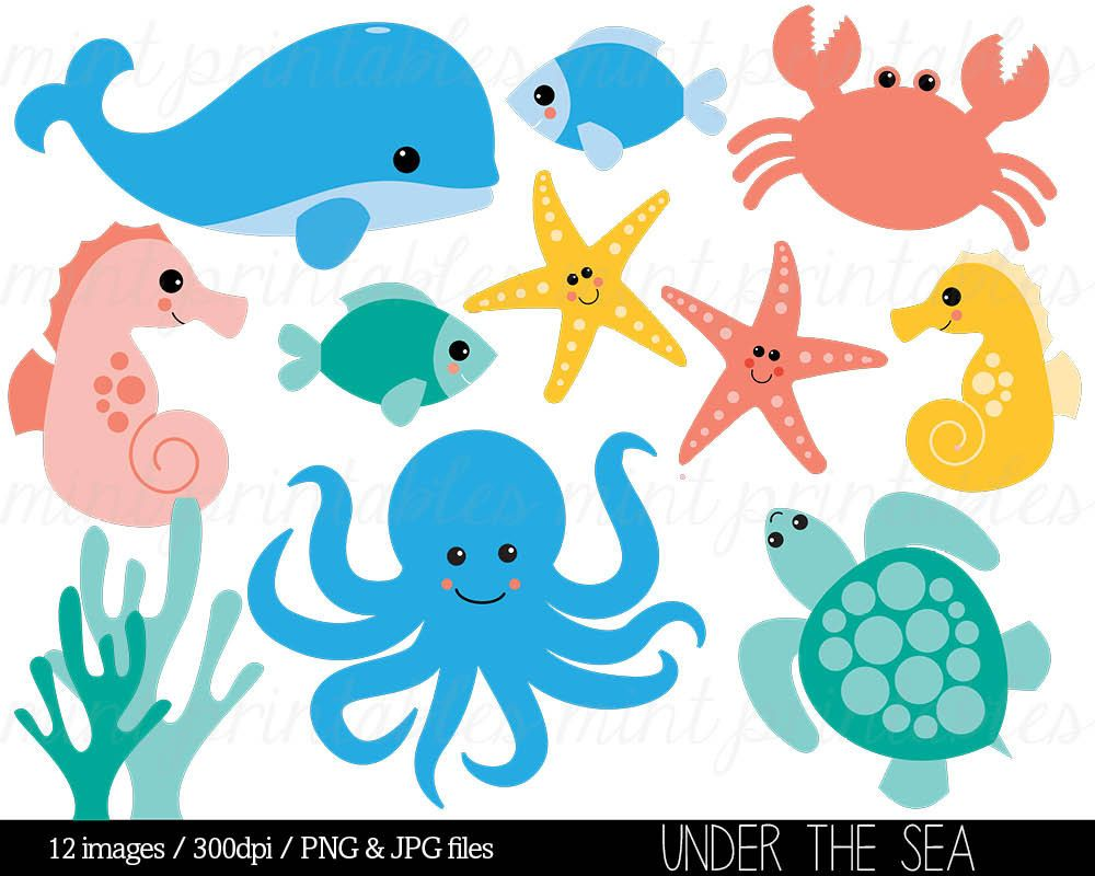 sea animal clipart under the sea baby sea creatures clip art rh pinterest com ocean animals clipart black and white ocean animals clip art black and white