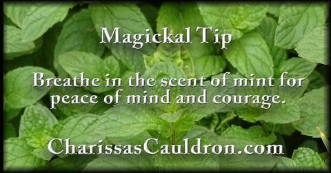 Magickal Tip #witchcottage