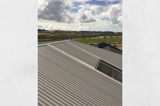 Looking For Roofing West Auckland Experts Archer Roofing Provides A Range Of Services For Property Owners Across Roofing Contractors Roof Restoration Roofing