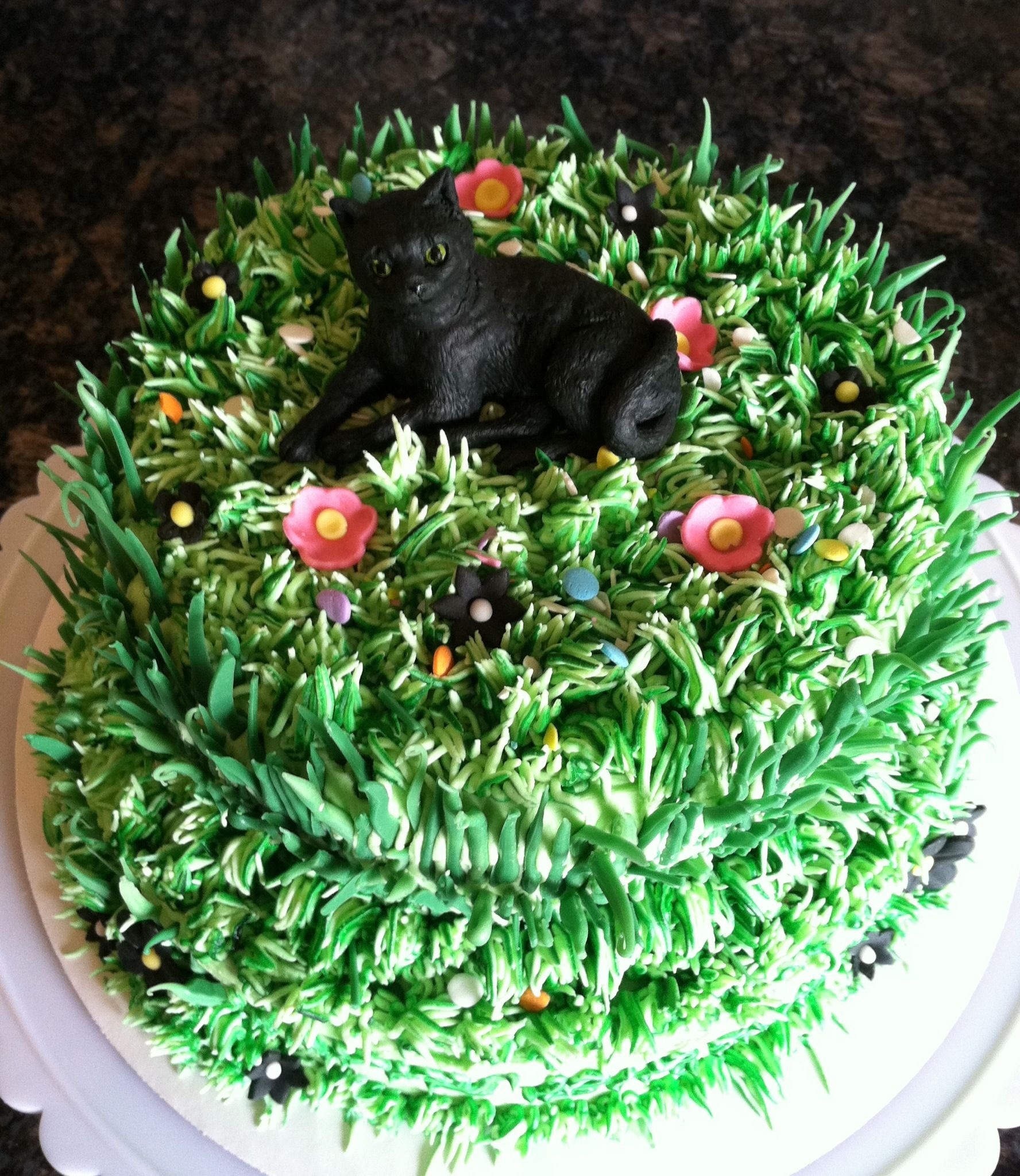 Black cat birthday cake with buttercream icing grass in tops and